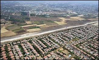 The Apartheid Wall is a means to cement the expanding illegal settlements as