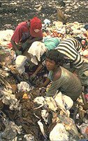 In vast swathes around the world's richest cities, millions of children try to subsist by living of the throw-outs of a wastful age.