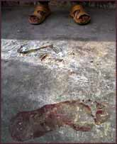 The bloodied footprints on the floor on the historic mosque testify to the most recent attack from the ?liberating forces?.
