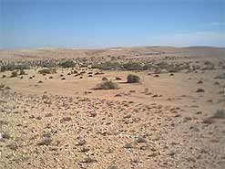 The Negev desert is largely a nuclear wasteland occupied already by Bedouin tribes that would lose access to their land, should it become a home for returning Palestinian exiles.