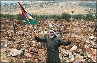 Unable to stop the destruction of his olive grove by Israeli occupiers, 75-year old Abdulrahman Yousef still has hope of a Palestine in peace.