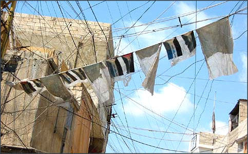 Palestinian flags woven into the electricity wires hanging over the streets of Ein el-Hilweh (Photo by Stefan Christoff)