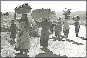 Dispossessed poorer Palestinians were forced to carry possessions out of Zionist areas on carts, on donkeys, or literally on their backs.