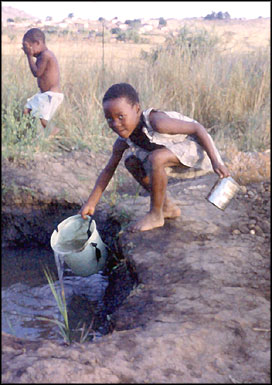'Political freedom alone is still not enough if you lack clean water.' Nelson Mandela, November 16th 2000.